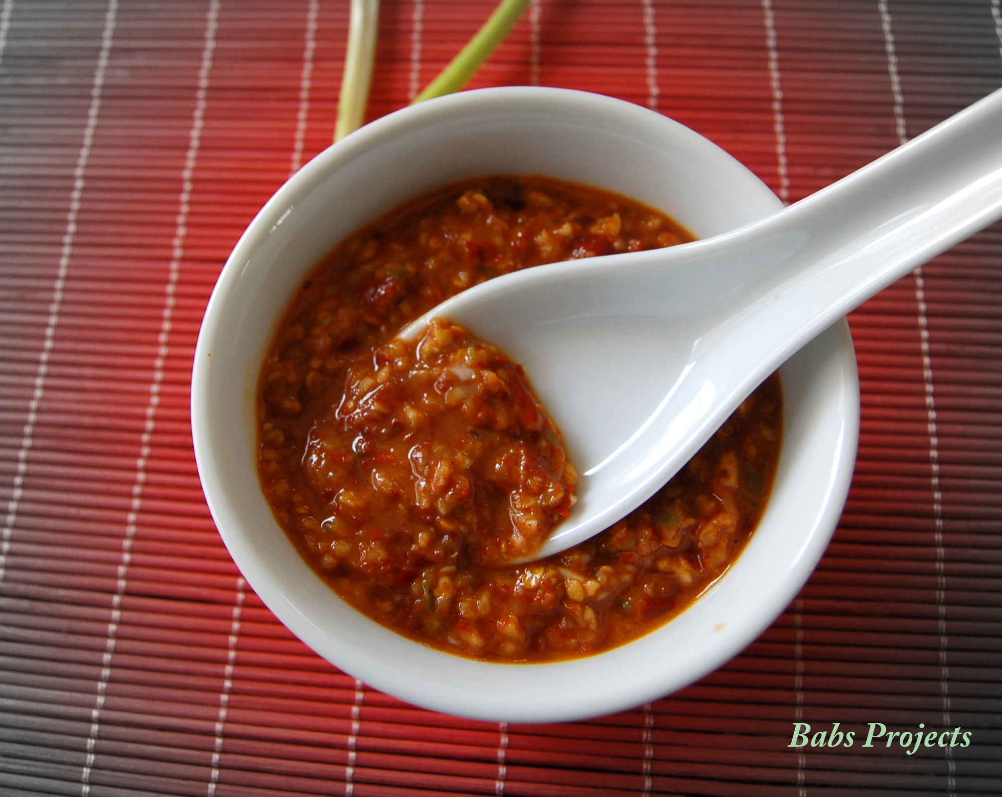 Asian Chili and Garlic Paste - Babs Projects